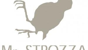 Mr Strozza blog mode mr auguste pas cher avis boutique en ligne sav commande delais livraison qualite